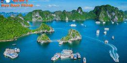 Thiết Kế Website Tại Quảng Ninh