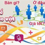 Thiết kế website rao vặt buôn bán online chuyên nghiệp