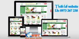 Thiết Kế Website Bán Tinh Dầu Tại Seo By Web