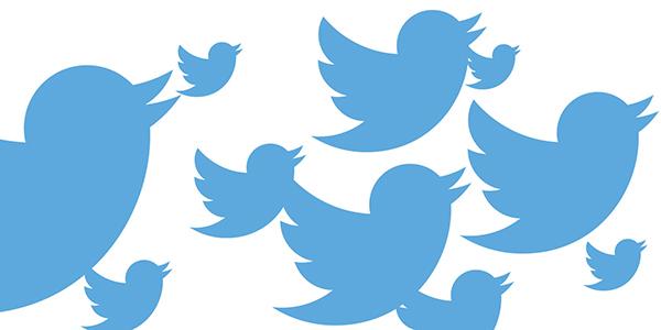 người twitter là gì